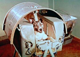 SPUTNIK II SPACE DOG