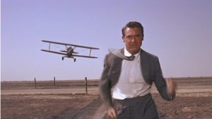 North by Northwest Plane